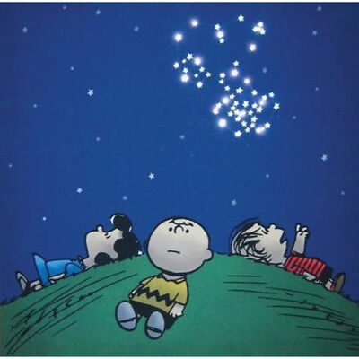 """Peanuts Gang Starry Night with Snoopy 15"""" x 15"""" Lighted Canvas Wall Art BOXED"""