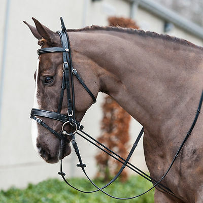 Elastic Training Bungee / Neck Stretcher / Chambon For Horses