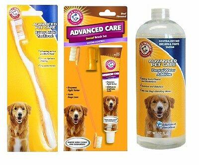 Arm And Hammer Dog Dental Care - Brush Set, Toothbrush, Dental Rinse