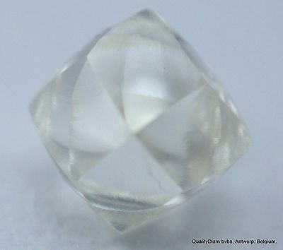 I Flawless Clean Diamond Out From Diamond Mine Rough Uncut Natural Gem Diamond