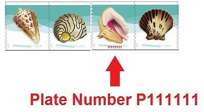 US Seashells postcard PNC4 strip set P111111 MNH 2017 after Feb 15