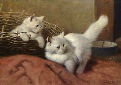 Fine Large 19th Century White Angora Cats Kittens Antique Oil Painting HEYER