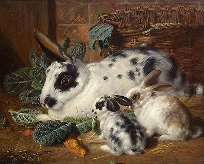 Fine 19th Century Rabbits Bunnies Family Meal Antique Oil Painting Alfred BARBER