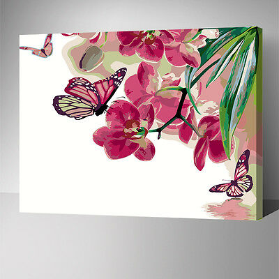 Framed Painting by Number kit Butterflies and Flower Floral Spring Season YZ7515