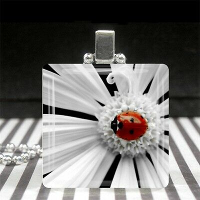 Red Ladybug White Daisy On Black Art Glass Tile Pendant Necklace Silver Jewelry
