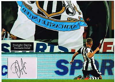 Dwight GAYLE SIGNED Autograph 16x12 Photo Dry Mount AFTAL COA Newcastle United