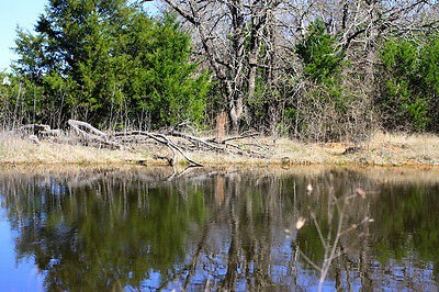 9.89 Acres Of Oklahoma Land With Pond For $595.81 A Month