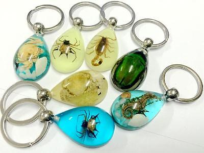14pc lots spider green beetle seadragon crab scorpion mix design key-chains