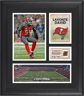 Lavonte David TB Buccaneers Framed 15x17 Collage w/ Game Used Football
