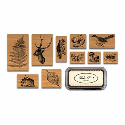 Cavallini - Tin of 10 Rubber Stamps - Flora & Fauna - Black Ink Stamp Pad Inc