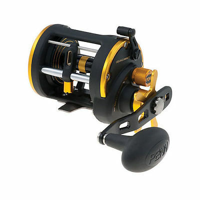 PENN Squall 20LWLH Levelwind Saltwater Fishing Reel Left Hand - SQL20LWLH