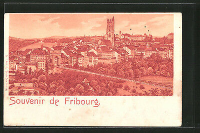 tolle Lithographie Fribourg, Panorama mit Brücke und Kathedrale