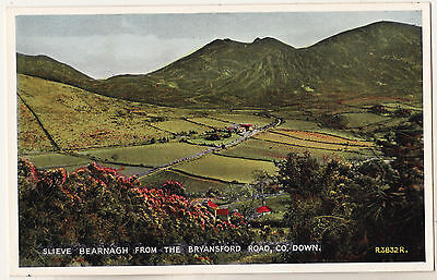 SLIEVE BEARNAGH FROM THE BRYANSFORD ROAD CO. DOWN 1940s-50s VALENTINES POSTCARD