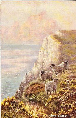 West coast of Scotland - Tuck Oilette post card 1913
