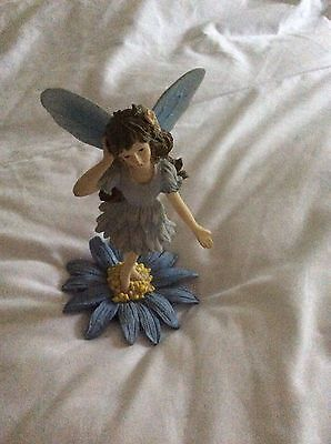 the fairy collection Cornflower Fairy With Authenticity Certificate