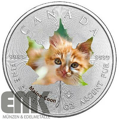 Kanada 5 Dollar 2017 Maple Leaf Maine Coon Cute Kittens (1) 1 Oz Silber Farbe St