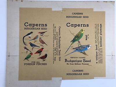 Rare 1940s Proof Advertising Card Packaging Caperns Budgerigar Seed