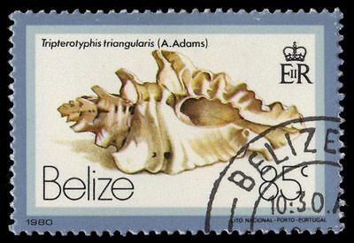 BELIZE 483 (SG544) - Triangular Typhis Shell (pa54948)