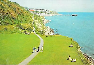 Cliff Path looking towards Ventnor , Isle of Wight. Unposted Postcard
