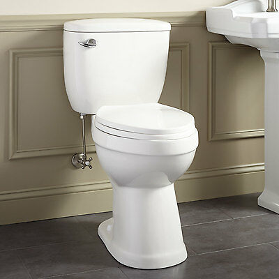 Stalnaker Siphonic Two Piece Elongated Toilet 19  Seat Height ADA Compliant. Kennard Dual Flush European Rear Outlet Toilet Two Piece Elongated