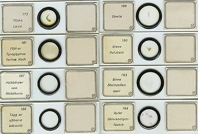 8 Numbered Microscope Slides by I.D. Moller