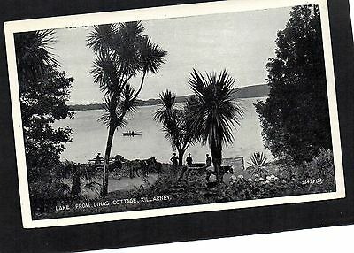 Lake From Dinas Cottage, Killarney. Unposted Postcard By Valentine's