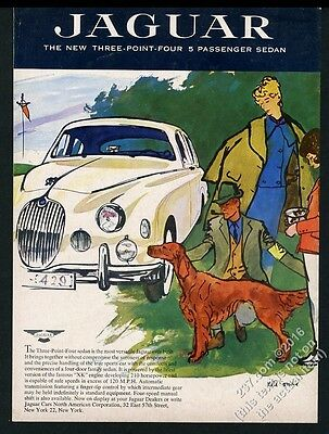 1958 Jaguar 3.4 car Rene Bouche Irish Setter art vintage print ad