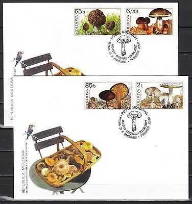 + Moldova, Scott cat.552-555. Mushrooms on 2 First day covers.