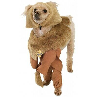Cowardly Lion Wizard of Oz Dog Doggy Halloween Pet Costume