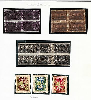 Central Lithuania stamps Interesting Collection Double/Triple Prints + PERNAUset