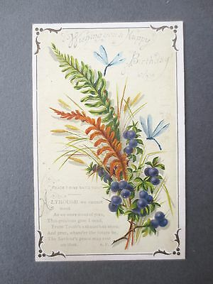 Antique Birthday Card C Caswell Ferns Sloes Dragonflies Verse A F Victorian