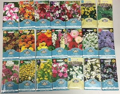 21 Packs Of Flower Seeds All In Date. Bargain