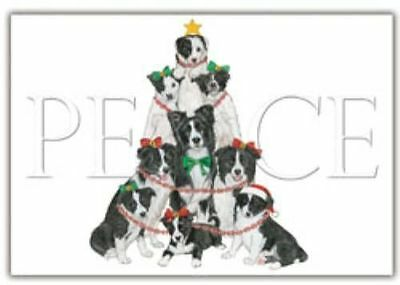 Ten Cards Pack BORDER COLLIE Peace Dog Breed Christmas Cards USA made
