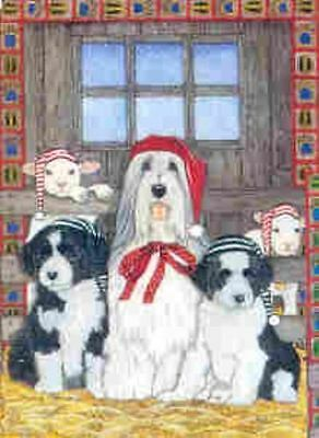Ten Cards Pack BEARDED COLLIE Dog Breed Christmas Cards USA made