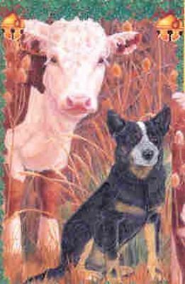 Ten Cards Pack AUSTRALIAN CATTLEDOG Dog Breed Christmas Cards USA made