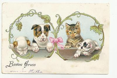 Helena Maguire  -Tabby Kitty Cats a Puppies i Plant Frame  /  ART NOUVEAU