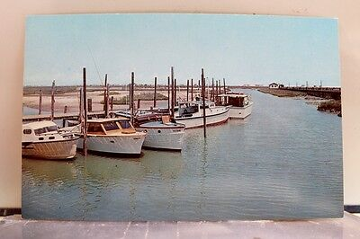 South Carolina SC Murrell's Inlet Postcard Old Vintage Card View Standard Post