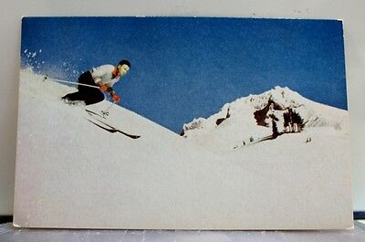 Scenic Pacific Mountain Skier Postcard Old Vintage Card View Standard Souvenir