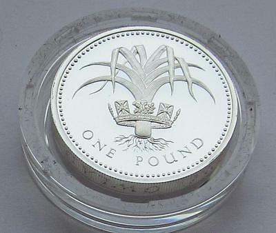 Royal Mint Silver Proof one pound (£1) coin Welsh Leek 1985 + COA