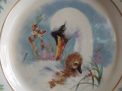Vtg 1975 Enoch Wedgwood Tunstall England Swan & Baby Bird Picture Saucer Plate
