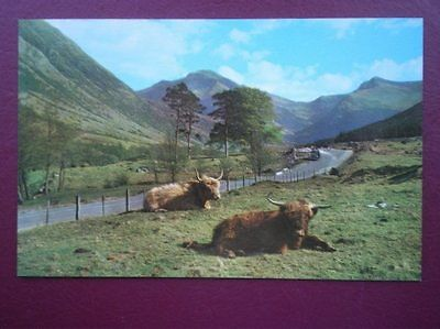Postcard Inverness-Shire The Road To The Hills - Glen Nevis