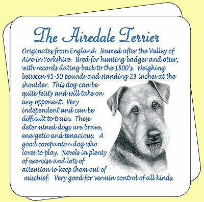 Airedale Terrier Dog Origins And Breed Facts Pair Of Gift Packed Wooden Coasters