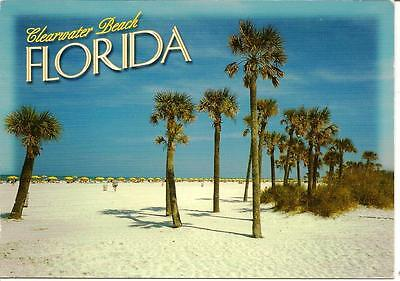 Clearwater Beach, Florida - Posted Postcard