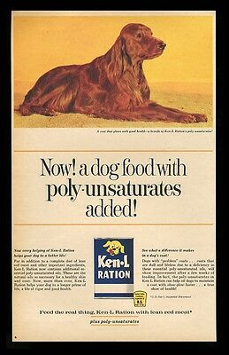 1963 Irish Setter color photo Ken-L Ration dog food vintage print ad 2