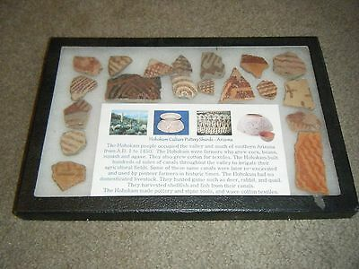 Hohokam pottery sherds - Beautiful Set in display case