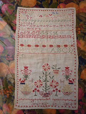 Sampler 1859 No Damage Nice Example