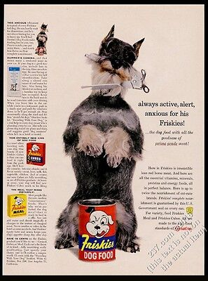 1958 schnauzer photo with can opener Friskies dog food vintage print ad