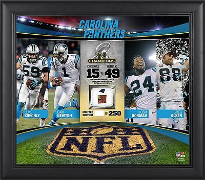 Carolina Panthers 2015 NFC Conference Champs Framed 15x17 Collage
