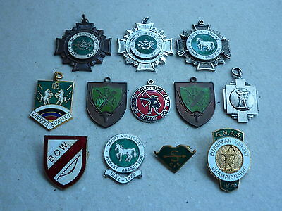 Collection Of Vintage  Archery Badges And Medals