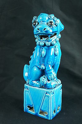 "Superb Antique Chinese Turquoise Blue Ceramic Porcelain Foo Dog 9"" [Y8-W6-A9-E9]"